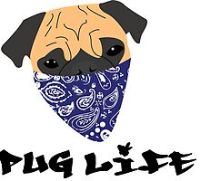Pug Life by HenryFromm