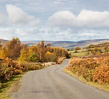 The road to Farndale by Ralph Bracewell