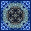 Indigo feathers 4 by maria paterson