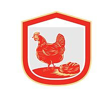 Hen Chicken Nest Egg Shield Retro by patrimonio
