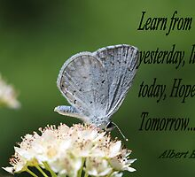 Learn From Today Card by Keala