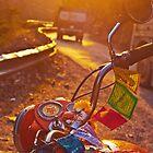 Himalayan roads by Anna Alferova