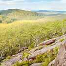 Dandahra Crags, Gibraltar Range National Park, New South Wales, Australia by Michael Boniwell