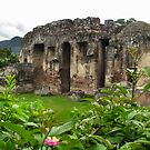 Ruins and Nature in Guatemala , 2009 by heatherfriedman