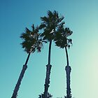 mas palm trees by Santamariaa
