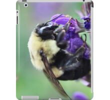 Mr. Fuzzy iPad Case/Skin