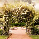 Rose Gated Garden by Jessica Jenney