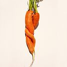 Carrot Love by Kitty Bitty