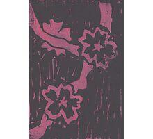 Pink Sakura in shade Photographic Print