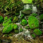 Moss Waterfall by jswolfphoto