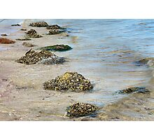 Among the Shoals  Photographic Print