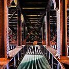 Beneath the Pont Alexandre III, Paris, France by Neville Jones