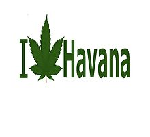 I Love Havana by Ganjastan