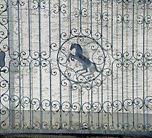 Horse-gate by Arie Koene