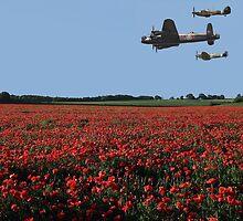 Battle of Britain Flight by Steve Adams