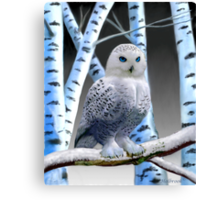 BLUE-EYED SNOW OWL Canvas Print