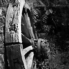 Broken Wheel by James Bovington