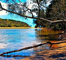 Woolgoolga Creek by wallarooimages