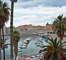 Old harbour of Dubrovnik - Croatia by Arie Koene