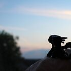 Tiny Toothless watching the sunset. by jennisney