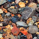 Underwater River Rocks by Tori Snow