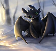 Toothless In Snow by Meow-Baby3