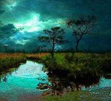 Solitude in Blues by Susan Werby