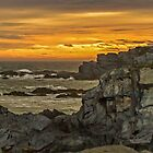 Cape St. Mary Sunset by Debbie  Roberts