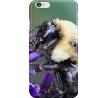Buzzing along iPhone Case/Skin
