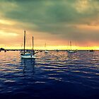 Corio Bay - Geelong Victoria by bekyimage