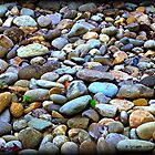 Tennessee River Rock by Lisa Taylor