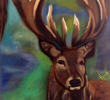 The Stag, Gentle Power  by Heidi-Clifton