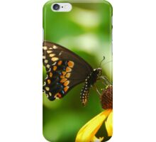 Swallowtail Butterfly iPhone Case/Skin