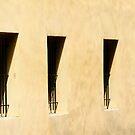 Shadows. by Paul Pasco