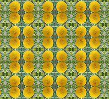 Acacia karroo motif by Lee Jones