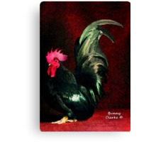 Fancy Chickens:  Crown Me Already!  My Harem is Waiting! Canvas Print