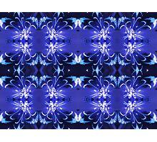 Gladiolus - light motif Photographic Print