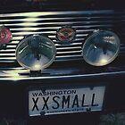 XX Small by Steve Walser