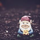 Gerome the Gnome by Beth Thompson