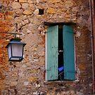 The window by annalisa bianchetti
