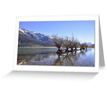 Willow Trees of Glenorchy, NZ Greeting Card
