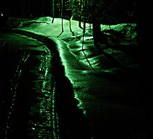 The Shinning Winter Path by michel bazinet