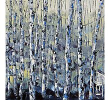 Winter Birch lll by Lisa Elley. Palette knife painting in oil Photographic Print