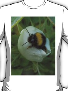 Bee- Have! T-Shirt