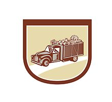 Vintage Pickup Truck Delivery Harvest Shield Retro by patrimonio