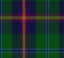00011 Young Clan Tartan  by Detnecs2013