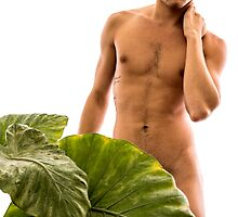 Male Torso with Elephant Ear Plant by erbeining