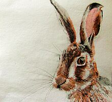 Daniel The Hare by MissJones