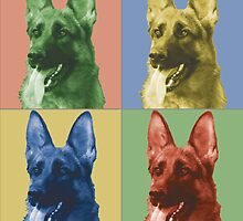 German shepherd by misterspotswood