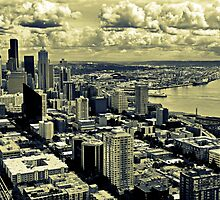 The view From the Space Needle, Seattle, Washington by Mona990